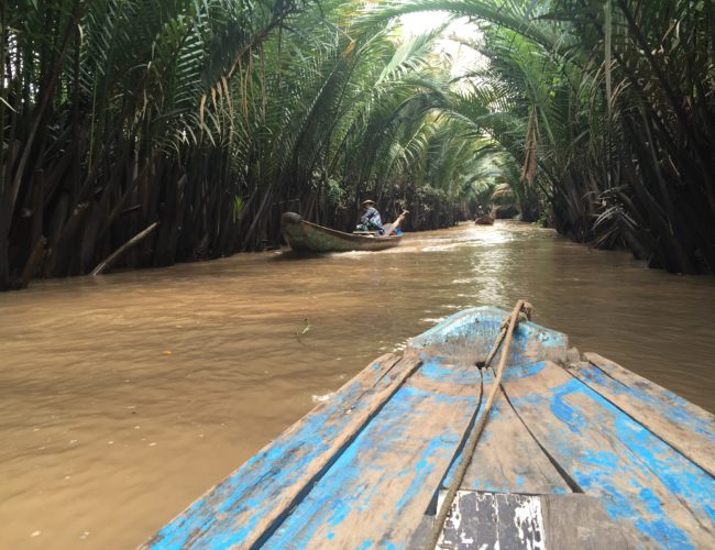 A day trip to the Mekong Delta