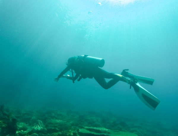 6 Reasons Why Scuba Diving is Better than Snorkeling