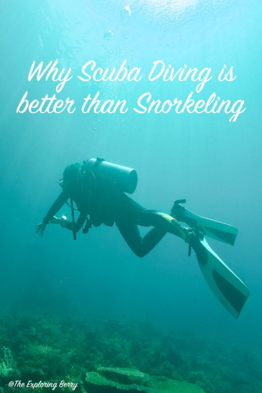 Six reasons why Scuba Diving is better than Snorkelling.