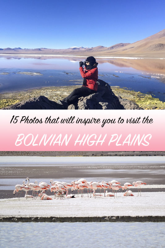 Check these 15 photos of pink Flamingos, colourful lagoons and snowed-peaks that will convince you to visit the Bolivian High Plains next!