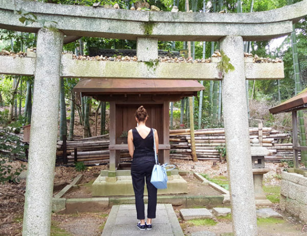 Ultimate Guide to 48 hours in Kyoto