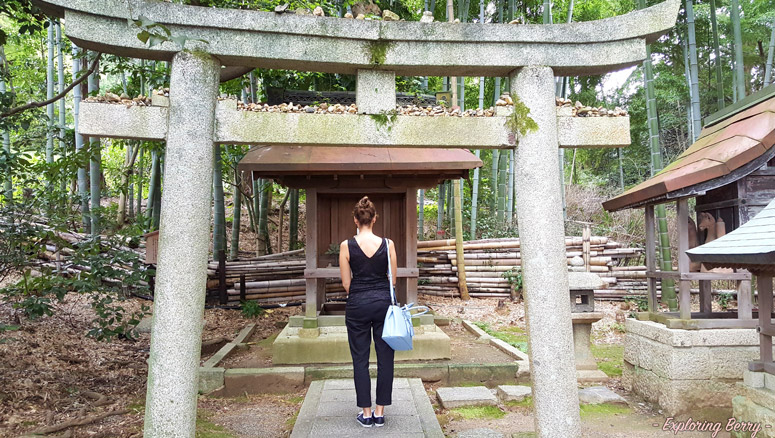 Kyoto-ultimate-guide-48-hours