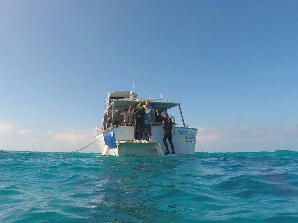 EB_Diving in Great Barrier Reef