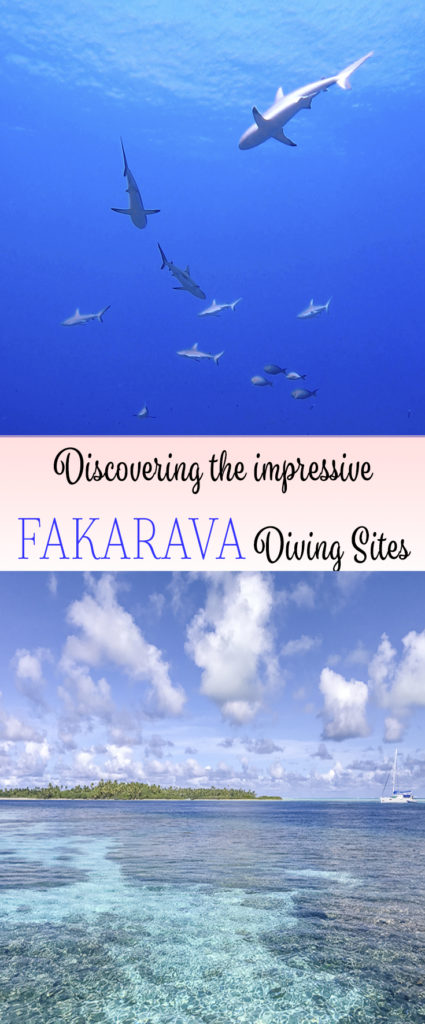 Discovering the impressive Fakarava Diving Sites